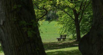 Berlin Park: The Very Best