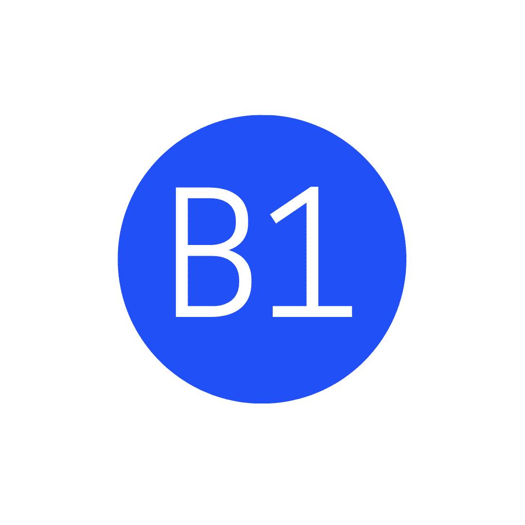 B1 Level