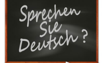 The German Language: All You Need to Know